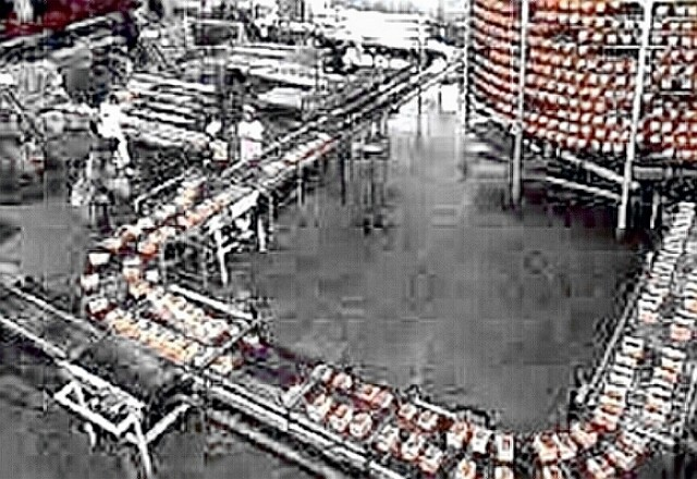 bread loaves on conveyer