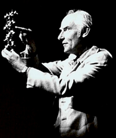 Scientist Francis Crick