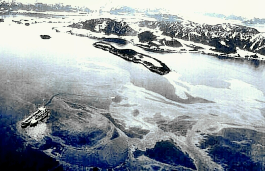 A research on the exxon valdez oil spill in the prince william sound of alaska